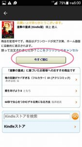 KindleA11
