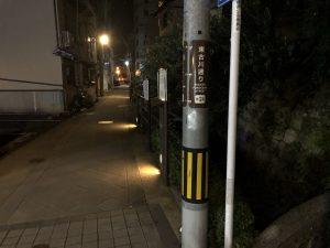 夜な夜なハフさんぽ_12