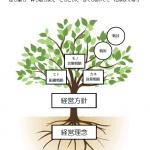 経営体系図